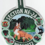 Section NE-2A 2012 NOAC Dangle