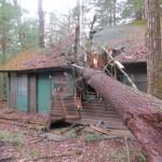 Northeast Region OA Hurricane Sandy Grant Recipients Announced