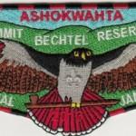Ashokwahta Lodge #339 2013 Jamboree Flap S22