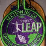 Section NE-2A 2016 Project Leap Staff Patch