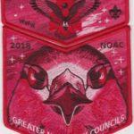 Kintecoying Lodge #4 2018 NOAC Delegate Set S12 X13